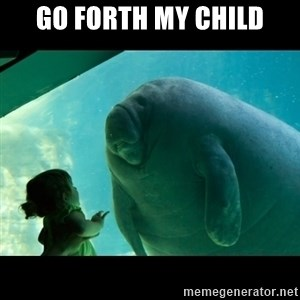 Overlord Manatee - GO FORTH MY CHILD