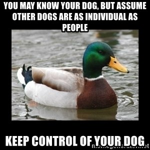 advice mallard - You may know your dog, but assume other dogs are as individual as people Keep control of your dog