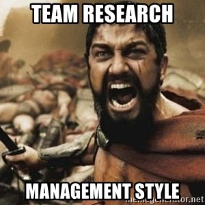 300 - TEAM RESEARCH MANAGEMENT STYLE