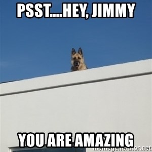 Roof Dog - Psst....hey, Jimmy  You are amazing