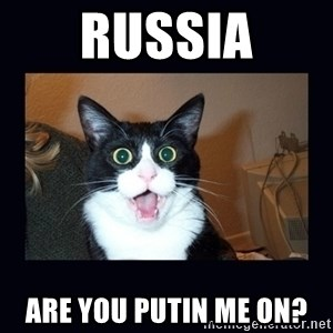 shocked cat - Russia Are You Putin me on?