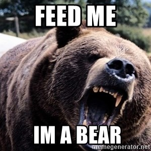 Bear week - FEED ME  IM A BEAR