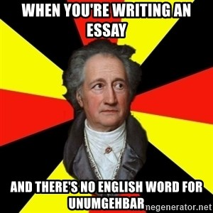 Germany pls - When you're writing an essay and there's no english word for unumgehbar