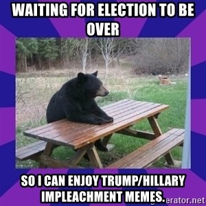 waiting bear - waiting for election to be over so I can enjoy trump/hillary impleachment memes.