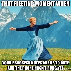 Sound Of Music Lady - That fleeting moment when your progress notes are up to date and the phone hasn't rung yet