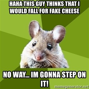Prospective Museum Professional Mouse - haha this guy thinks that i would fall for fake cheese no way... im gonna step on it!