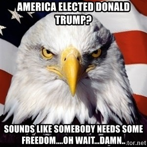 Freedom Eagle  - America elected Donald Trump? Sounds like somebody needs some freedom....oh wait...damn..