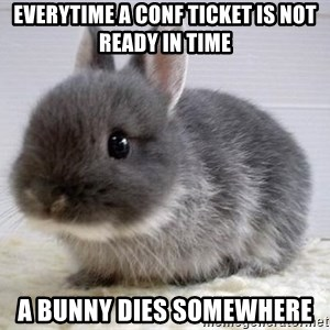 ADHD Bunny - Everytime a CONF ticket is not ready in time A bunny dies somewhere