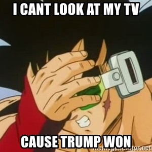 Facepalm Goku - I cant look at my TV cause trump won