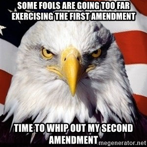 Freedom Eagle  - some fools are going too far exercising the first amendment time to whip out my second amendment