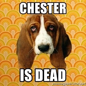 SAD DOG - chester is dead