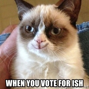 Happy Grumpy Cat 2 -  When you vote for ish