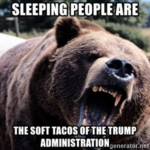 Bear week - Sleeping People are  the Soft Tacos of the Trump Administration