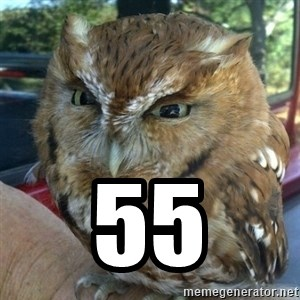 Overly Angry Owl -  55