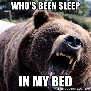 Bear week - Who's been sleep  In my bed