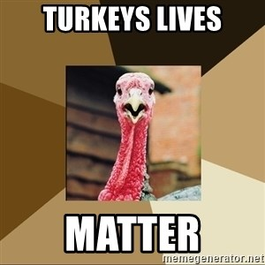 Quirky Turkey - Turkeys Lives Matter
