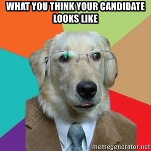 Business Dog - What you think your candidate looks like