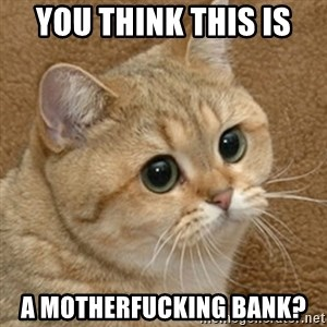 motherfucking game cat - you think this is  a motherfucking bank?