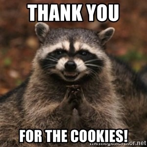 evil raccoon - tHANK YOU   FOR THE COOKIES!