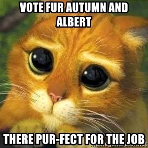 Shrek cat 2 - vote fur autumn and albert There pur-fect for the job