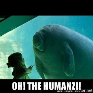 Overlord Manatee -  Oh! the humanzi!