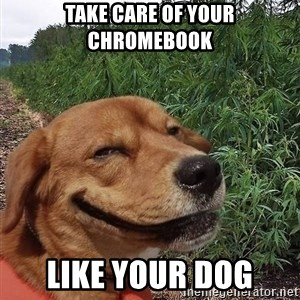 dogweedfarm - take care of your chromebook like your dog