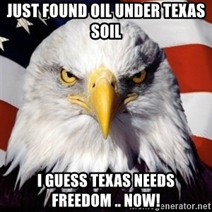 Freedom Eagle  - Just Found Oil Under Texas Soil I guess Texas Needs Freedom .. NOW!