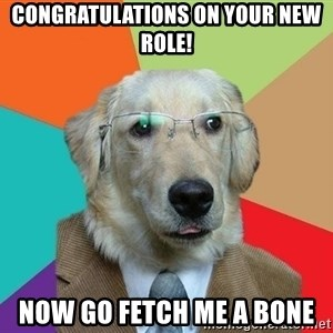 Business Dog - congratulations on your new role! now go fetch me a bone