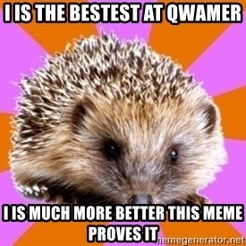 Homeschooled Hedgehog - I IS THE BESTEST AT QWAMER  I IS MUCH MORE BETTER THIS MEME PROVES IT
