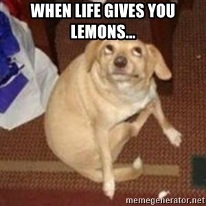 Oh You Dog - When life gives you lemons...