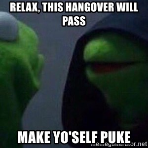 Evil kermit - relax, this hangover will pass Make yo'self puke