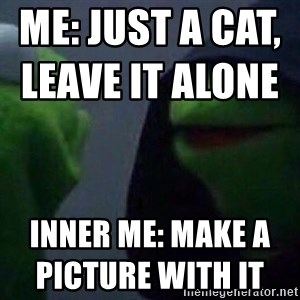 Evil kermit - me: just a cat, leave it alone                                     inner me: make a picture with it