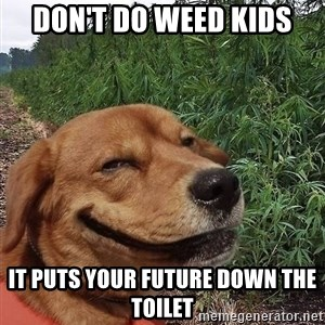dogweedfarm - Don't do weed kids It puts your future down the toilet