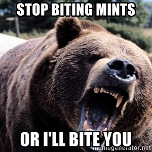 Bear week - Stop biting mints Or I'll bite you