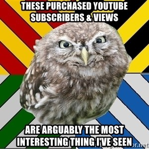 JEALOUS POTTEROMAN - these purchased youtube subscribers & views are arguably the most interesting thing i've seen