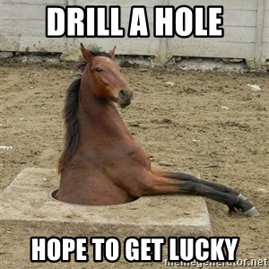 Hole Horse - drill a hole hope to get lucky