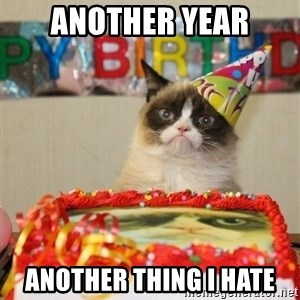 Grumpy Cat Birthday hat - another year another thing i hate