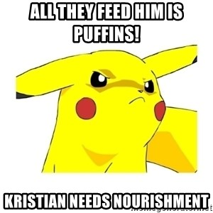 Pikachu - All they feed him is puffins! Kristian needs nourishment