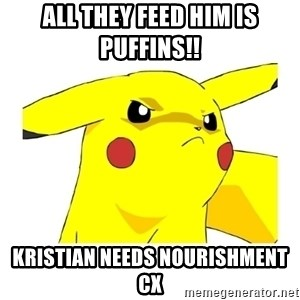 Pikachu - All they feed him is puffins!! Kristian needs nourishment cx