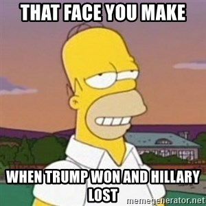 Homer MMM - that face you make  when trump won and Hillary lost
