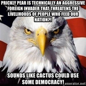 Freedom Eagle  - Prickly pear is technically an aggressive foreign invader that threatens the livelihoods of people who feed our nation?! sounds like cactus could use some democracy!