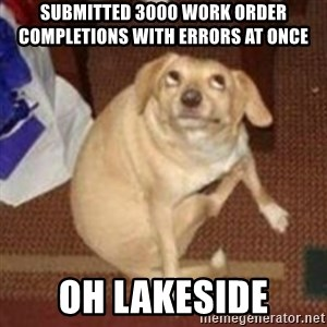 Oh You Dog - Submitted 3000 work order completions with errors at once Oh Lakeside