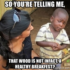 So You're Telling me - so you're telling me, that wood is not infact, a healthy breakfest?