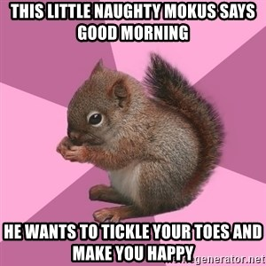 Shipper Squirrel - THIS LITTLE NAUGHTY MOKUS SAYS GOOD MORNING HE WANTS TO TICKLE YOUR TOES AND MAKE YOU HAPPY