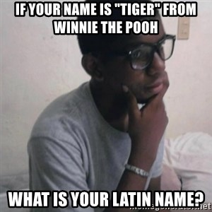 """Thinking Nigga - If your name is """"tiger"""" from winnie the pooh What is your latin name?"""