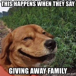 dogweedfarm - THis Happens when they say Giving away family