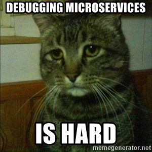 Depressed cat 2 - Debugging microservices is hard