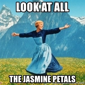 Sound Of Music Lady - Look at all The Jasmine Petals