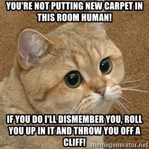 motherfucking game cat - YOU'RE NOT PUTTING NEW CARPET IN THIS ROOM HUMAN! IF YOU DO I'LL DISMEMBER YOU, ROLL YOU UP IN IT AND THROW YOU OFF A CLIFF!