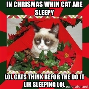 GRUMPY CAT ON CHRISTMAS - in chrismas whin cat are sleepy lol cats think befor the do it lik sleeping LOL